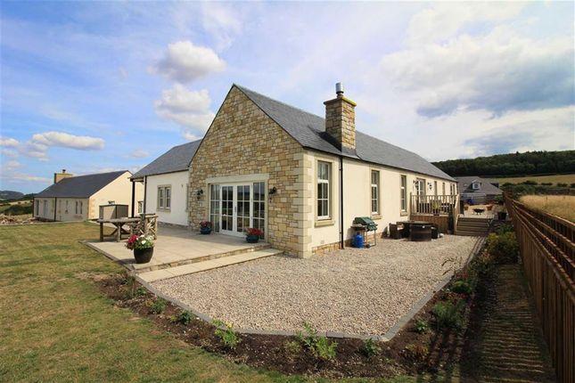 Thumbnail Detached house for sale in Bonchester Bridge, Hawick