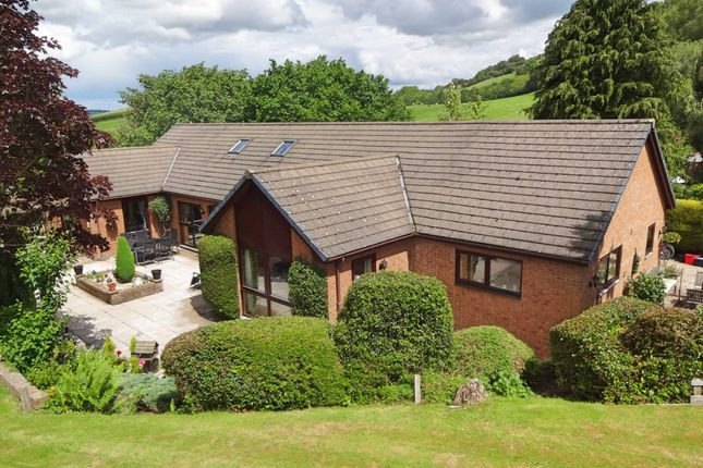 Thumbnail Detached house for sale in Sharnbrook, Upper Dolfor Road, Newtown, Powys
