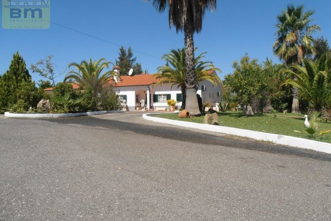 Detached house for sale in Ladoeiro, Ladoeiro, Idanha-A-Nova