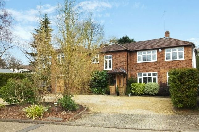 Thumbnail Detached house for sale in Paddock Way, Woodham, Addlestone