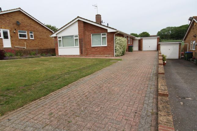 Thumbnail Detached bungalow to rent in Lexden Road, Seaford