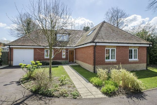 Thumbnail Detached house to rent in Grove Place, Winchester