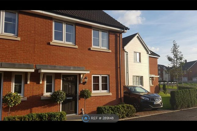 Thumbnail Semi-detached house to rent in Ellisons Crescent, Ipswich