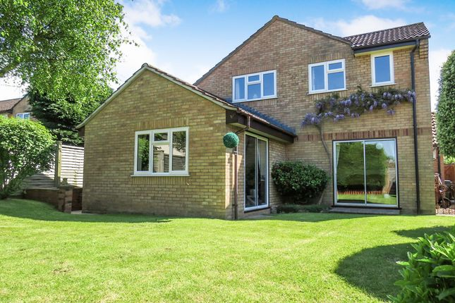 Thumbnail Detached house for sale in Bilberry Grove, Taunton