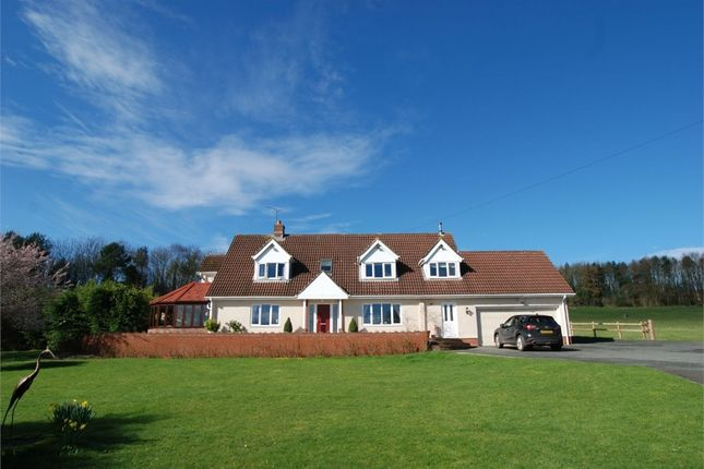 Thumbnail Detached house for sale in Llanvaches, Caldicot