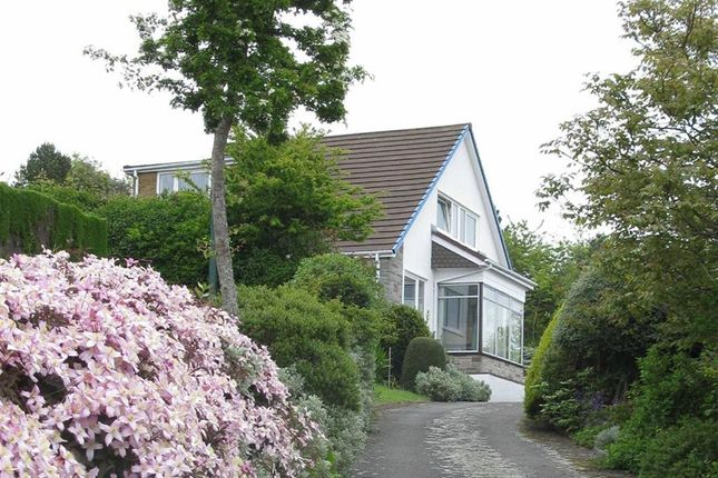 Thumbnail Detached house for sale in Rhoshendre, Waunfawr, Aberystwyth