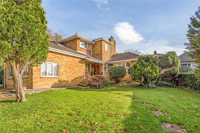 Thumbnail Detached house for sale in Outlands Lane, Curdridge