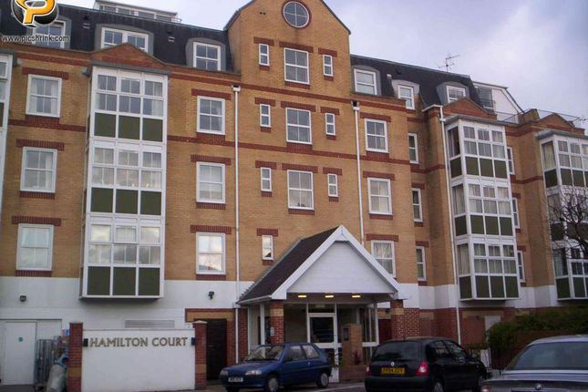 Thumbnail Flat to rent in Hamilton Court, Ashby Place