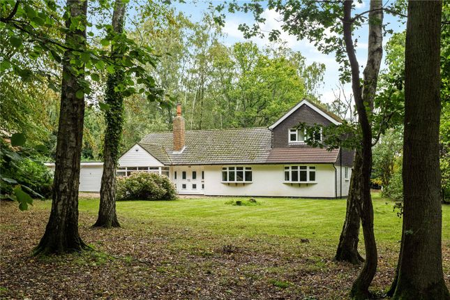Thumbnail Detached house for sale in Oldhill Wood, Studham, Dunstable, Bedfordshire