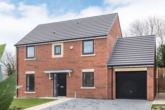 """Thumbnail Detached house for sale in """"The Nedderton"""" at Loansdean, Morpeth"""