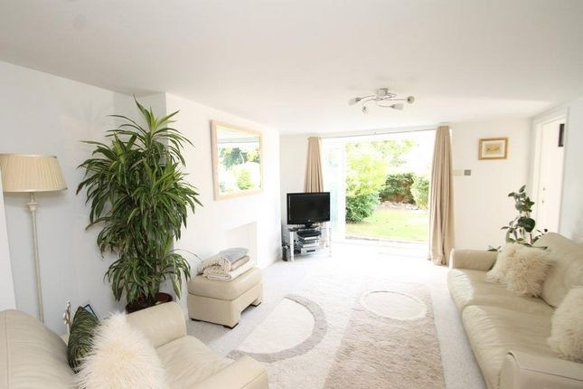 Thumbnail Flat to rent in Thorn Park, Mannamead, Plymouth