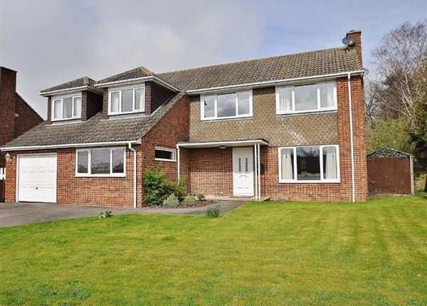 Thumbnail Detached house for sale in Orchard Close, Mersham, Ashford