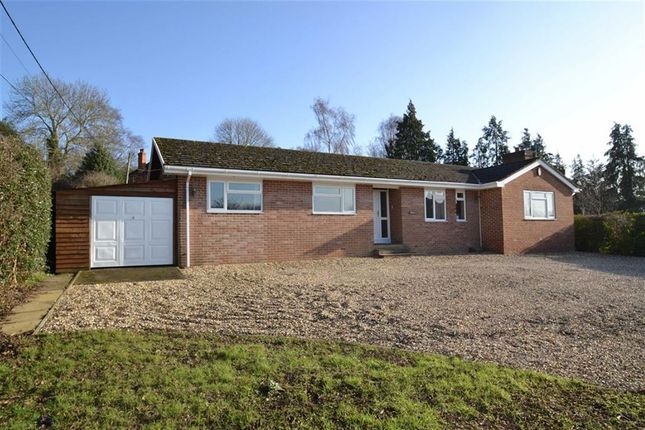 Thumbnail Detached bungalow for sale in Ashmore Green, Berkshire