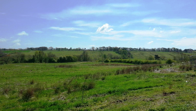 Thumbnail Land for sale in Blackston Road, Avonbridge, Falkirk