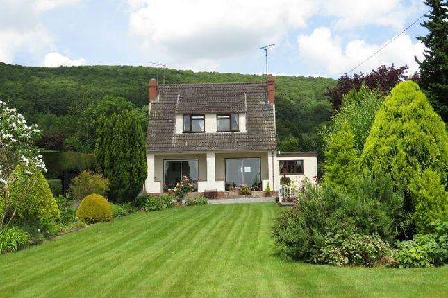 Thumbnail Detached house for sale in Cheddar Road, Axbridge