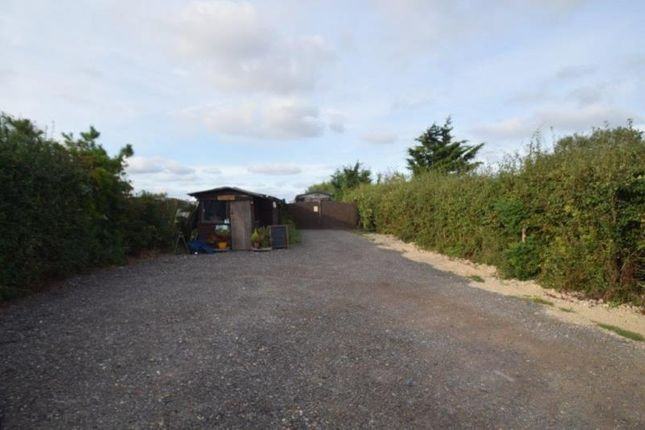 Thumbnail Industrial for sale in Lot, Little Buskins, Canewdon Road, Canewdon