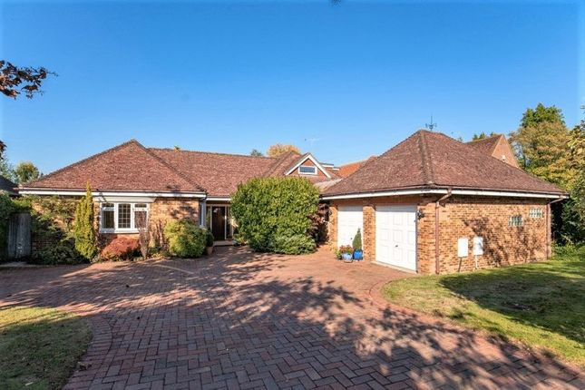 Thumbnail Detached bungalow for sale in Brownswood Road, Beaconsfield