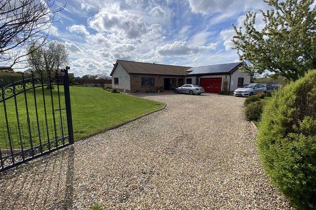 Thumbnail Detached bungalow for sale in Idole, Carmarthen