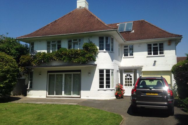 Thumbnail Detached house to rent in The Drive, Craigweil, Bognor Regis