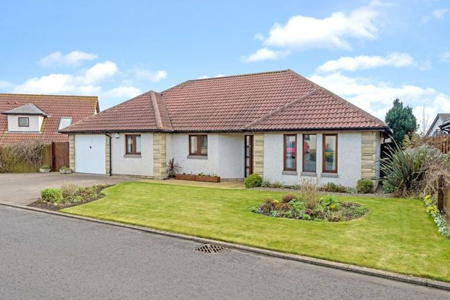 Thumbnail Detached bungalow for sale in 9 Felkington Avenue, Crail