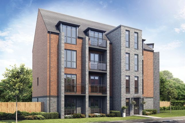 "Thumbnail Duplex for sale in ""The Ely"" at Whinney Hill, Durham"