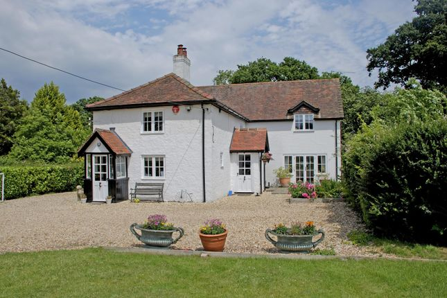 Thumbnail Detached house to rent in Burley, Ringwood, Dorset