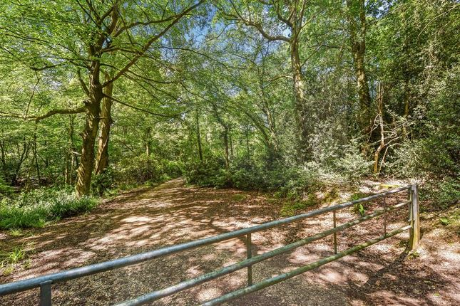 Thumbnail Land for sale in Straight Mile, Ampfield, Romsey