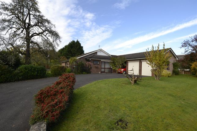 Thumbnail Detached bungalow for sale in Baughton, Earls Croome, Worcester