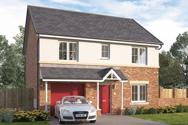 "Thumbnail Detached house for sale in ""The Woodbridge Detached"" at Browney Lane, Browney, Durham"