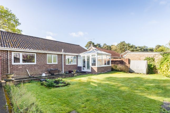 Thumbnail Detached bungalow for sale in St Ives, Ringwood, Hampshire