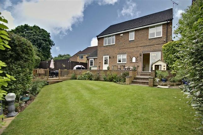 Thumbnail Detached house for sale in Nightingale Close, Abbots Langley