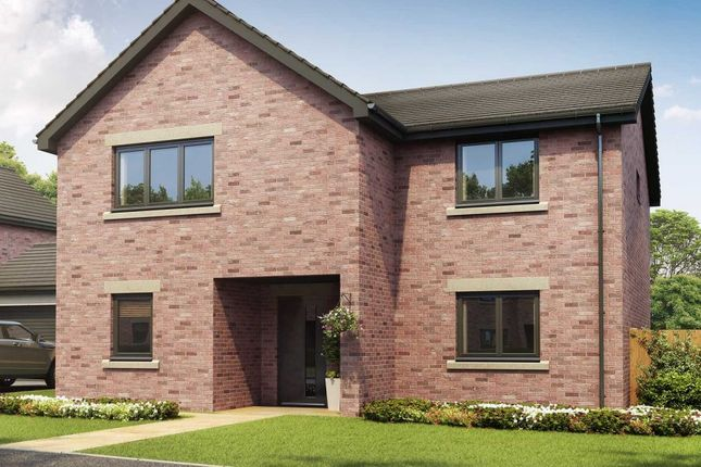 County Durham New Homes For Sale Buy New Homes In County