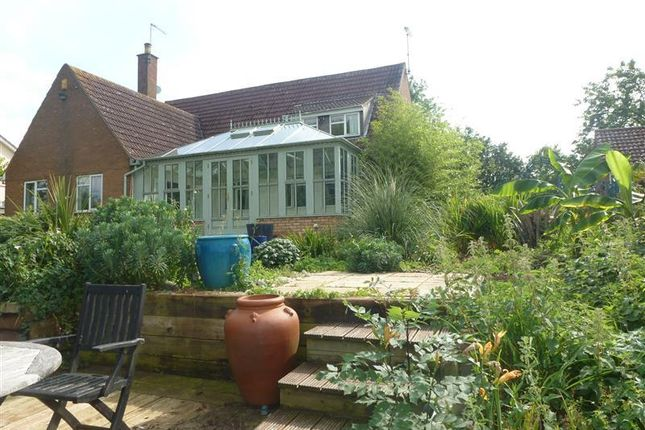 Thumbnail Property to rent in Ramsey Road, Ramsey Forty Foot, Huntingdon