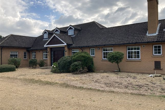 3 bed detached bungalow to rent in Little Barford, St. Neots PE19