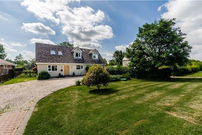 Thumbnail Detached house for sale in Straight Furlong, Pymoor, Ely