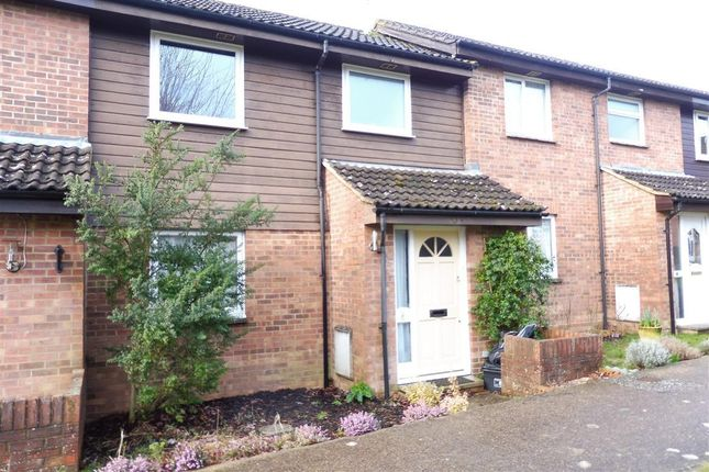 Thumbnail Property to rent in Whitegates Close, South Chailey, Lewes