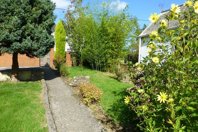 Garden of Newtown, Ammanford, Carmarthenshire. SA18