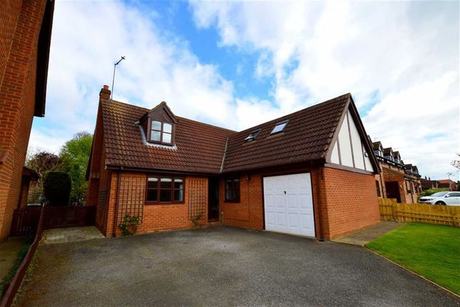 Thumbnail Detached house for sale in Hymers Close, Brandesburton, East Yorkshire