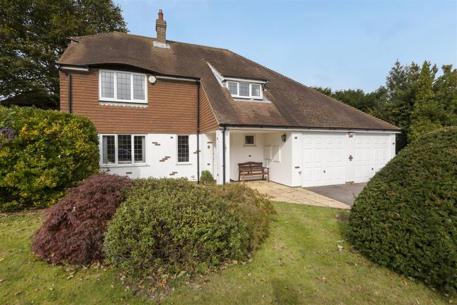 Thumbnail Detached house for sale in Lime Close, St. Leonards-On-Sea