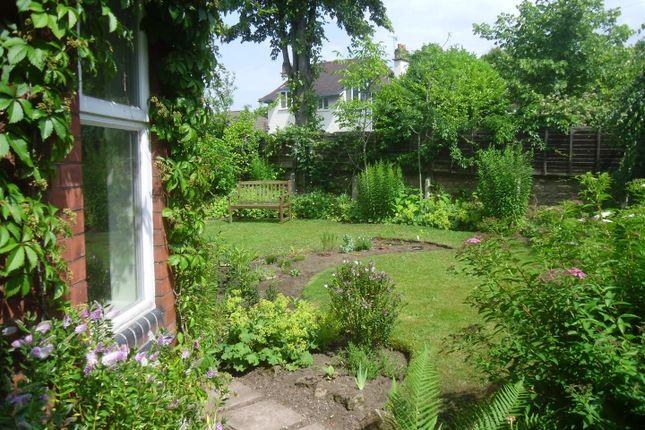 Vendor's Garden Photo