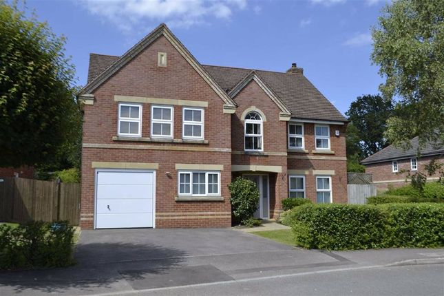 Thumbnail Detached house for sale in Spring Gardens, Wash Water, Newbury, Berkshire