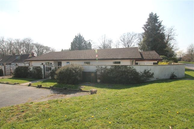 Thumbnail Detached bungalow for sale in Kings Stag, Sturminster Newton, Dorset