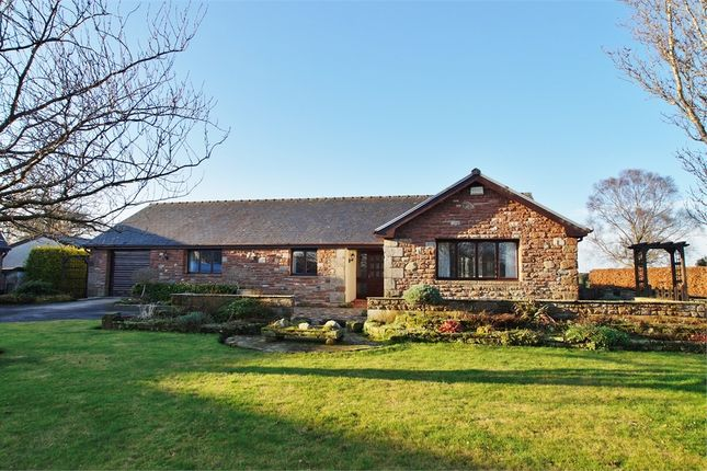Thumbnail Detached bungalow for sale in Stone Garth, Low Braithwaite, Ivegill, Carlisle, Cumbria