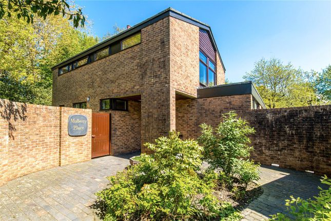 Commercial Property Ditchling