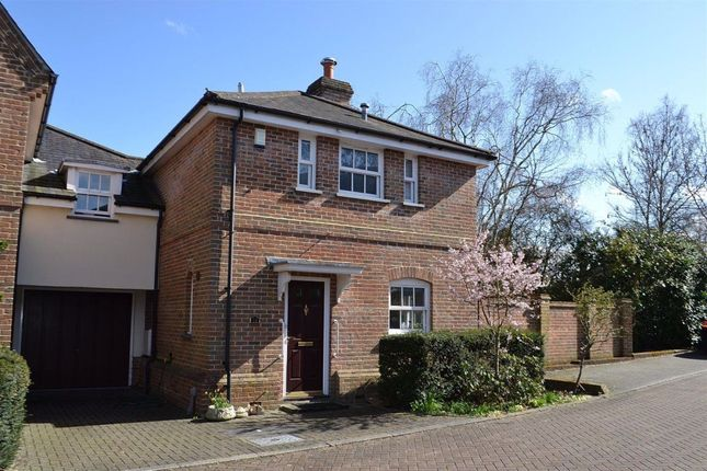 Thumbnail Detached house to rent in Yew Tree Place, Bishops Stortford, Herts