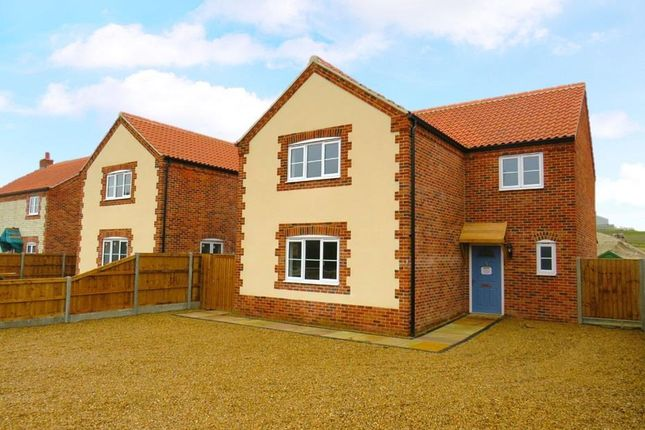 Thumbnail Detached house to rent in Whiteplot Road, Methwold Hythe, Thetford