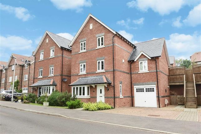 Thumbnail Detached house for sale in Reef Way, Hailsham