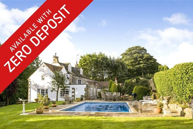 Thumbnail Detached house to rent in Richmond Hill, Markington, Harrogate, North Yorkshire