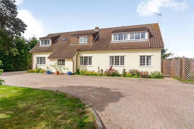 Thumbnail Detached house for sale in Cocks Lane, Maidens Green, Warfield, Berkshire