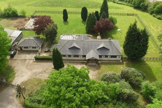 Thumbnail Equestrian property for sale in Buckhurst Road, Westerham, Kent